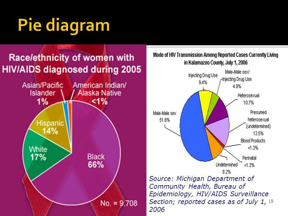 19 Pie diagram Source: Michigan Department of Community Health, Bureau of Epidemiology, HIV/AIDS Surveillance Section; reported cases as of July 1, 2006