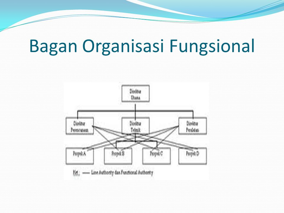 Bagan Organisasi Fungsional