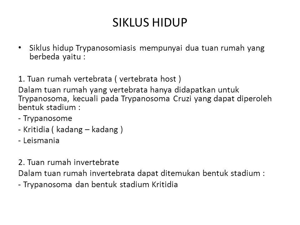 Morfologi umum 1.