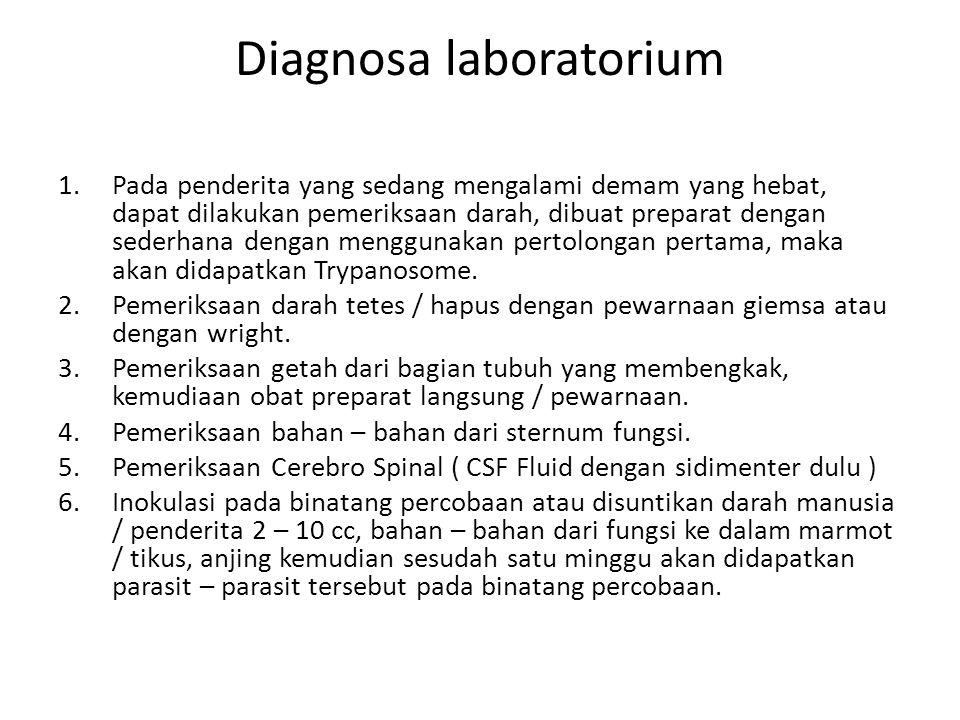 Diagnosa laboratorium 1.Pada penderita yang sedang mengalami demam yang hebat, dapat dilakukan pemeriksaan darah, dibuat preparat dengan sederhana den