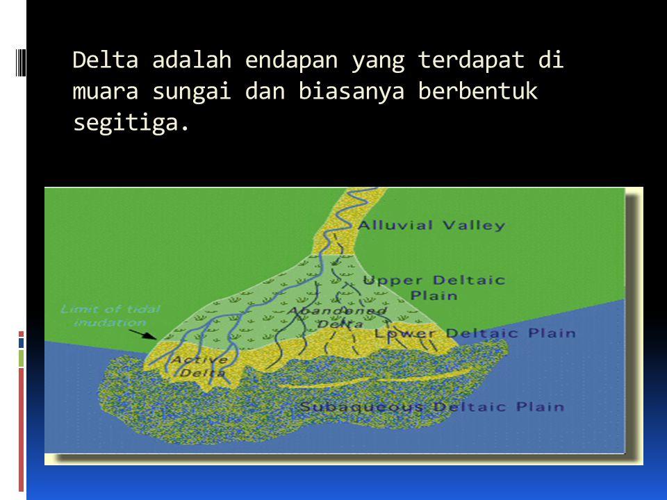 Delta adalah endapan yang terdapat di muara sungai dan biasanya berbentuk segitiga.