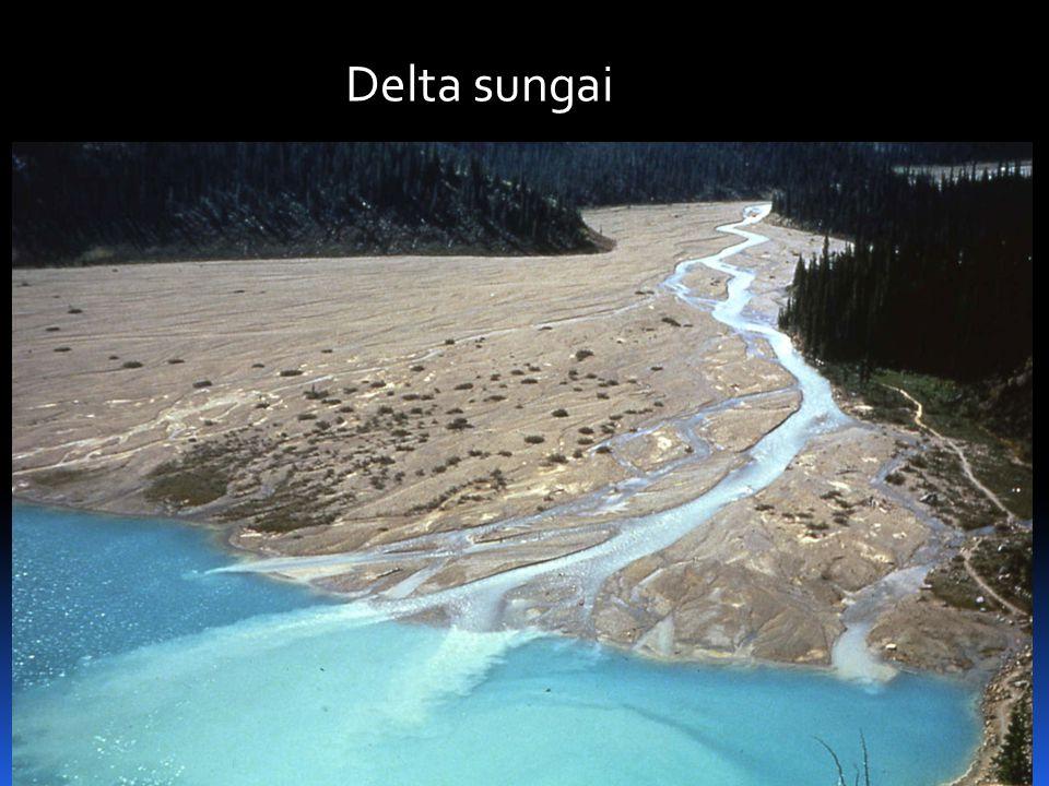 Delta sungai
