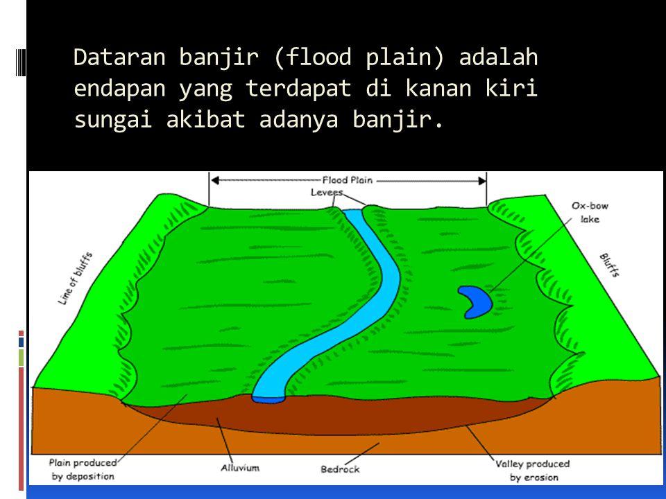 Dataran banjir (flood plain) adalah endapan yang terdapat di kanan kiri sungai akibat adanya banjir.