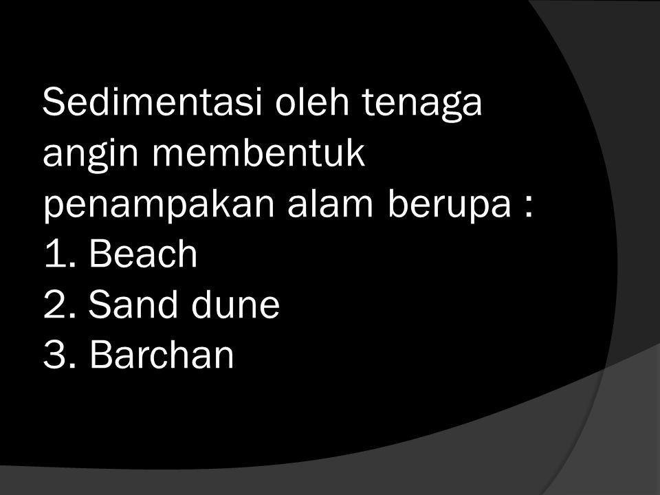 Sedimentasi oleh tenaga angin membentuk penampakan alam berupa : 1. Beach 2. Sand dune 3. Barchan