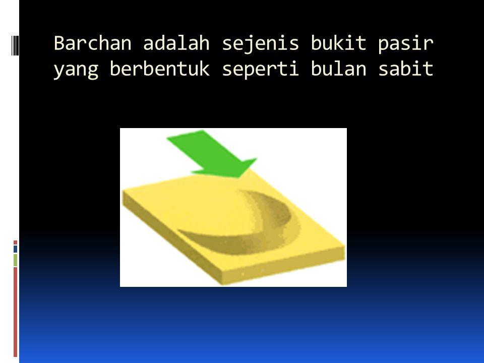 Barchan adalah sejenis bukit pasir yang berbentuk seperti bulan sabit