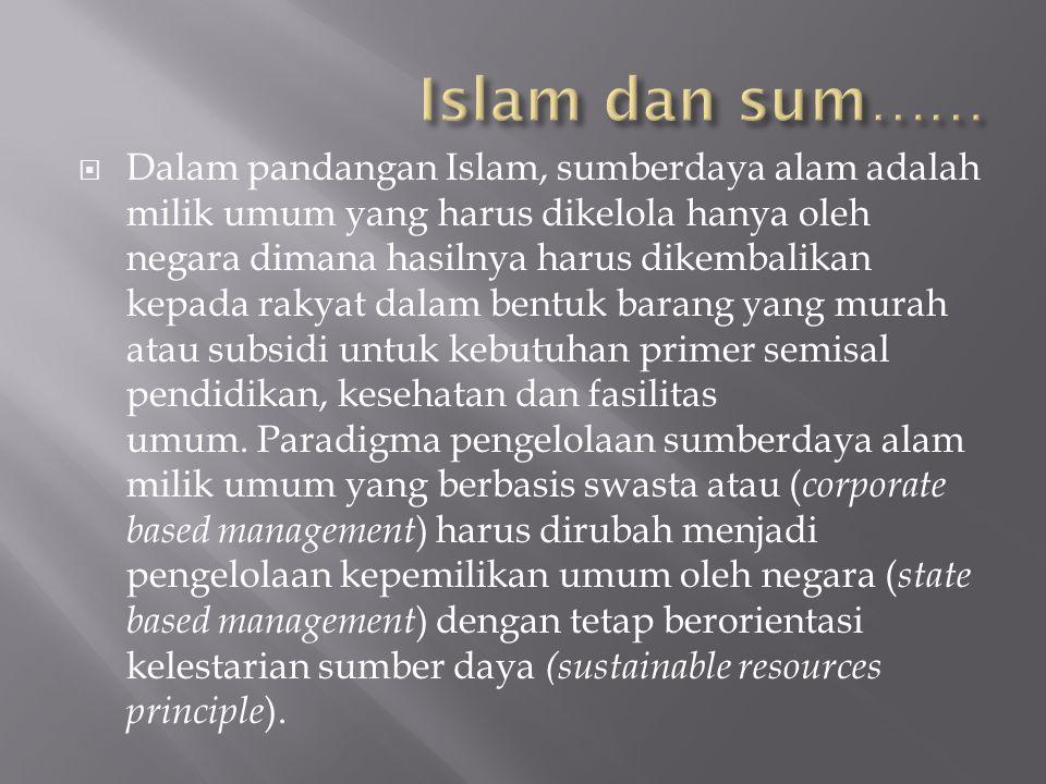  Dalam pandangan Islam, sumberdaya alam adalah milik umum yang harus dikelola hanya oleh negara dimana hasilnya harus dikembalikan kepada rakyat dala