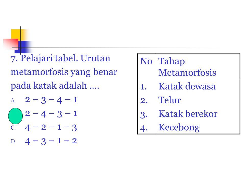 7. Pelajari tabel. Urutan metamorfosis yang benar pada katak adalah …. A. 2 – 3 – 4 – 1 B. 2 – 4 – 3 – 1 C. 4 – 2 – 1 – 3 D. 4 – 3 – 1 – 2 NoTahap Met