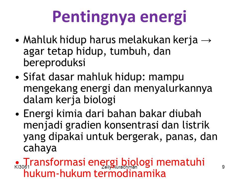 KI3061Zeily Nurachman10 Perubahan energi yang terjadi dalam reaksi kimia Energi bebas Gibbs,G, mengekspresikan jumlah energi yang mampu melakukan kerja selama reaksi pada suhu dan tekanan tetap Entalpi, H, merupakan kandungan kalor dari sistem reaksi Entropi, S, merupakan ekspresi kuantitatif dari keacakan atau ketidakteraturan sistem ΔG = ΔH — TΔS (T, P tetap)