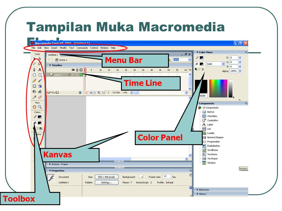 Tampilan Muka Macromedia Flash Time Line Kanvas Menu Bar Toolbox Color Panel