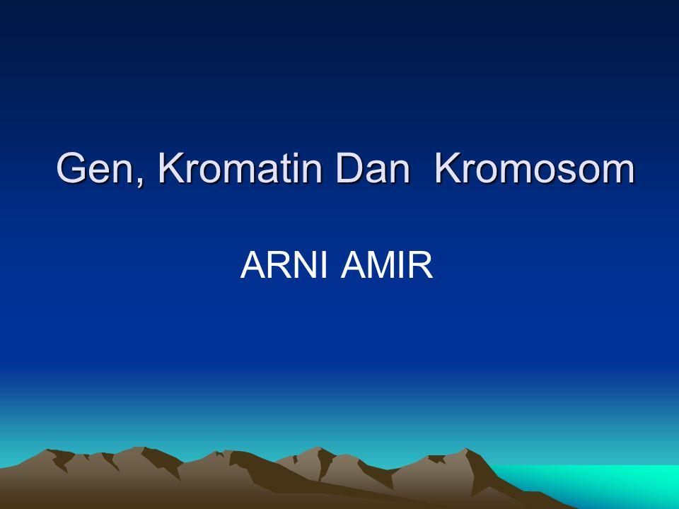 Gen, Kromatin Dan Kromosom ARNI AMIR
