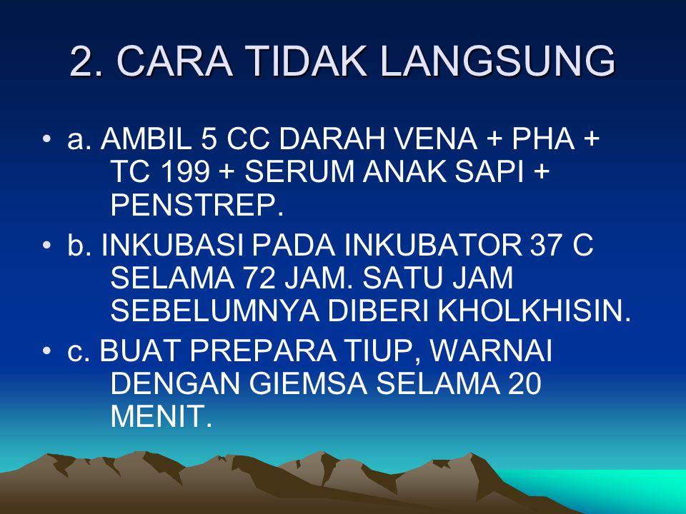 2. CARA TIDAK LANGSUNG a. AMBIL 5 CC DARAH VENA + PHA + TC 199 + SERUM ANAK SAPI + PENSTREP. b. INKUBASI PADA INKUBATOR 37 C SELAMA 72 JAM. SATU JAM S