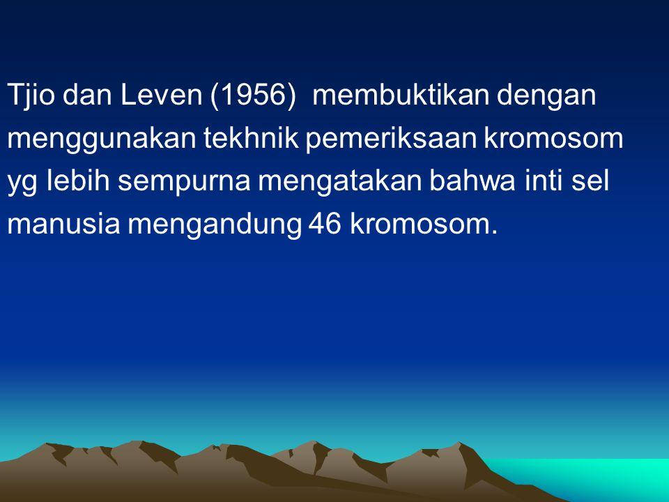 Tjio dan Leven (1956) membuktikan dengan menggunakan tekhnik pemeriksaan kromosom yg lebih sempurna mengatakan bahwa inti sel manusia mengandung 46 kr