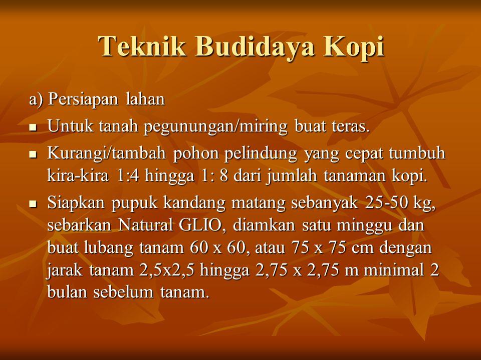 Teknik Budidaya Kopi a) Persiapan lahan Untuk tanah pegunungan/miring buat teras.