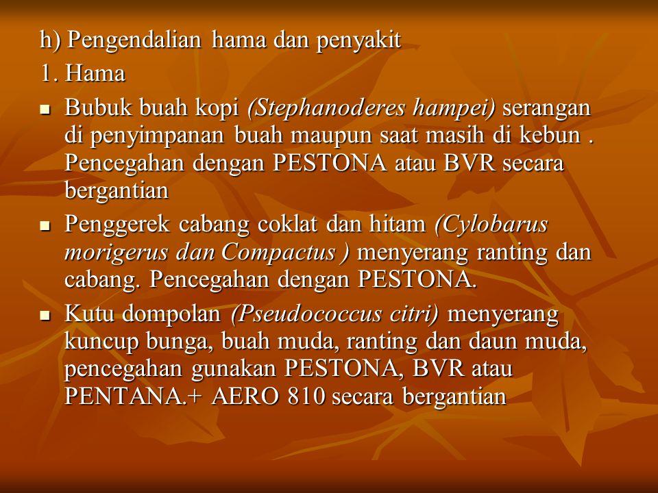 h) Pengendalian hama dan penyakit 1.