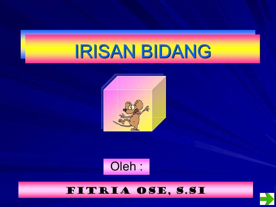 Oleh : Fitria ose, s.sI IRISAN BIDANG