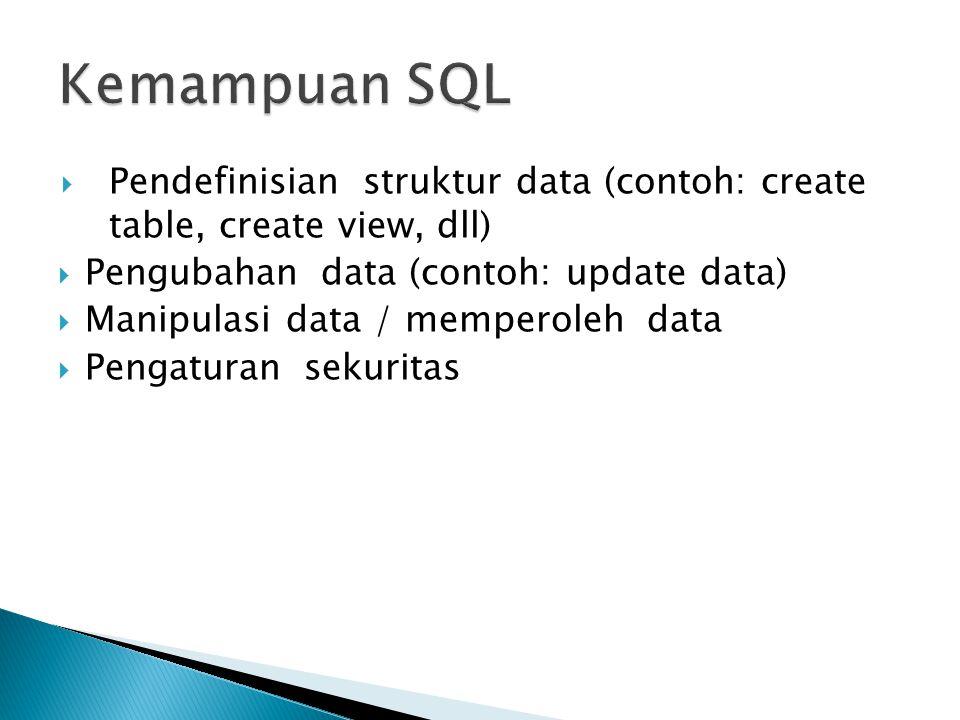  Database Administrator  Programmer  Pengguna