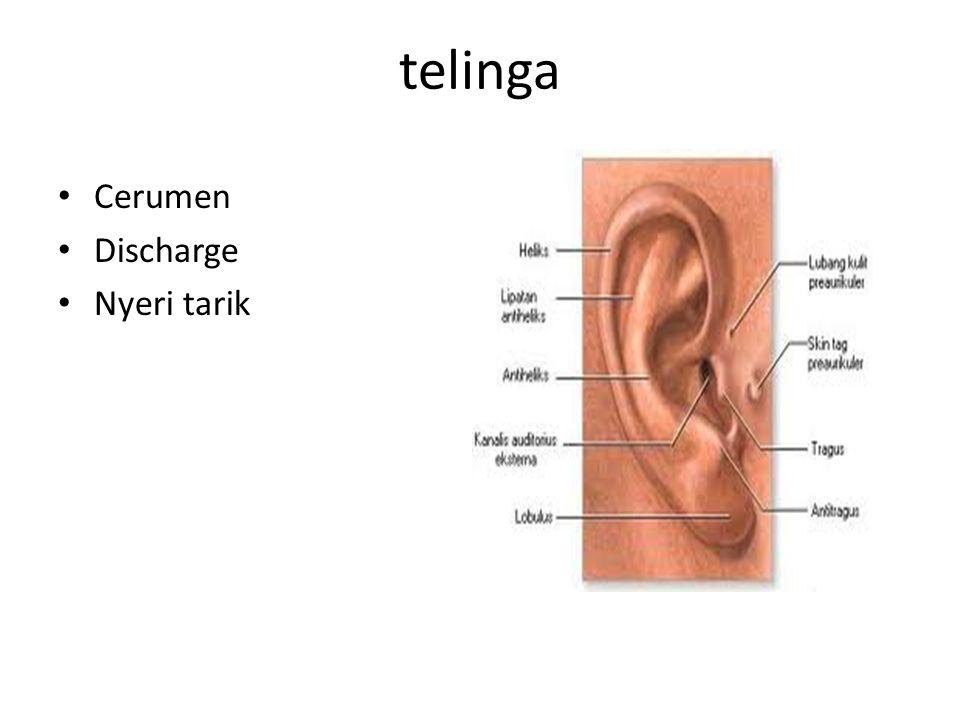 telinga Cerumen Discharge Nyeri tarik