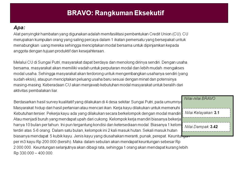 BRAVO: Rangkuman Eksekutif Apa: Alat penyingkir hambatan yang digunakan adalah memfasilitasi pembentukan Credit Union (CU).