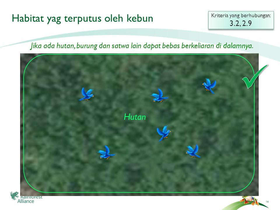 15 Habitat yang terputus oleh kebun Kriteria yang berhubungan: 3.2, 2.9 Kriteria yang berhubungan: 3.2, 2.9 Hutan Kebun Hutan Jika ada huta yang terputus oleh kebun, satwa tidak dapat bergerak/melintas antara suatu tempat ke tempat lain.