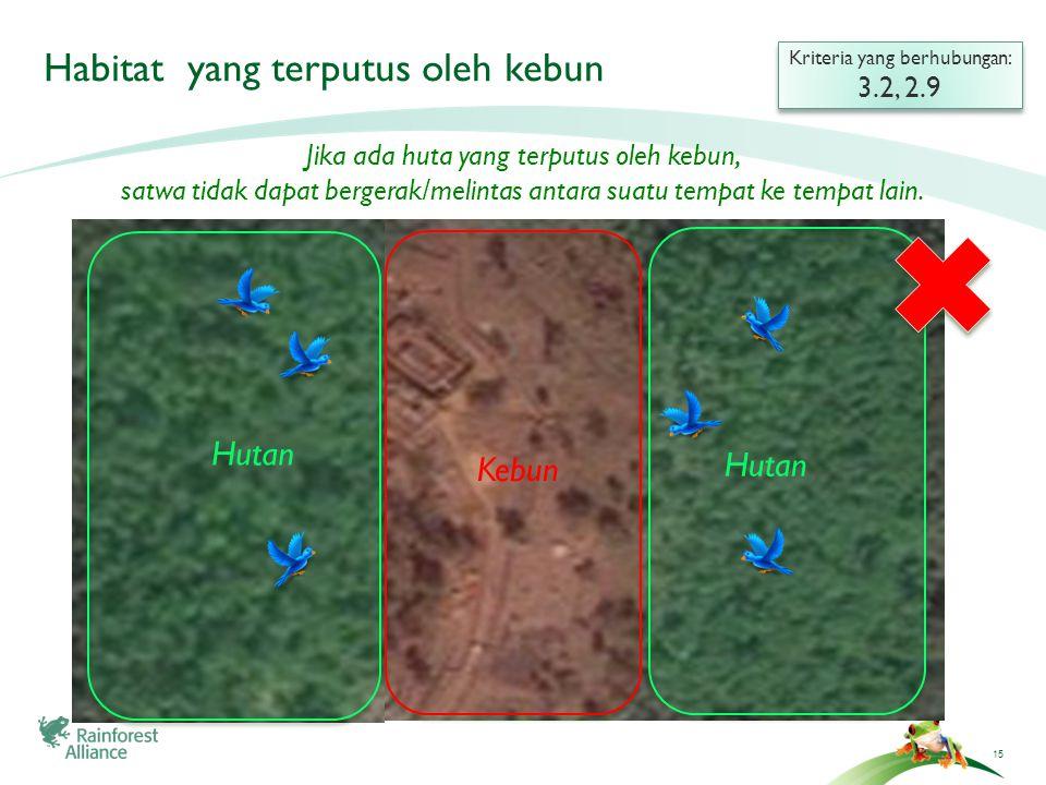 15 Habitat yang terputus oleh kebun Kriteria yang berhubungan: 3.2, 2.9 Kriteria yang berhubungan: 3.2, 2.9 Hutan Kebun Hutan Jika ada huta yang terpu