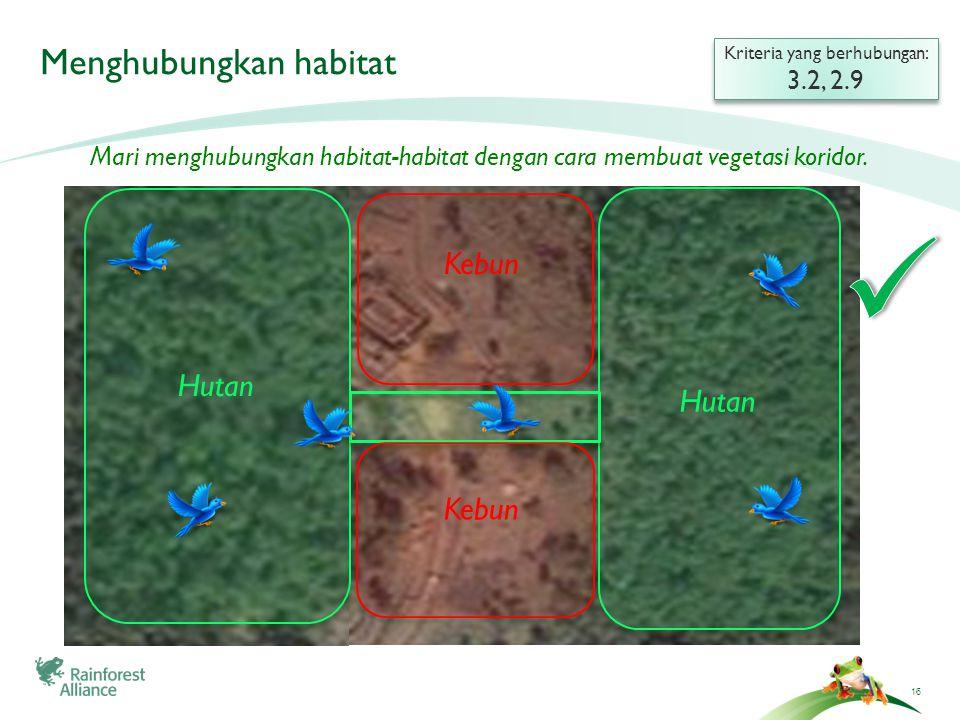 16 Menghubungkan habitat Kriteria yang berhubungan: 3.2, 2.9 Kriteria yang berhubungan: 3.2, 2.9 Mari menghubungkan habitat-habitat dengan cara membua