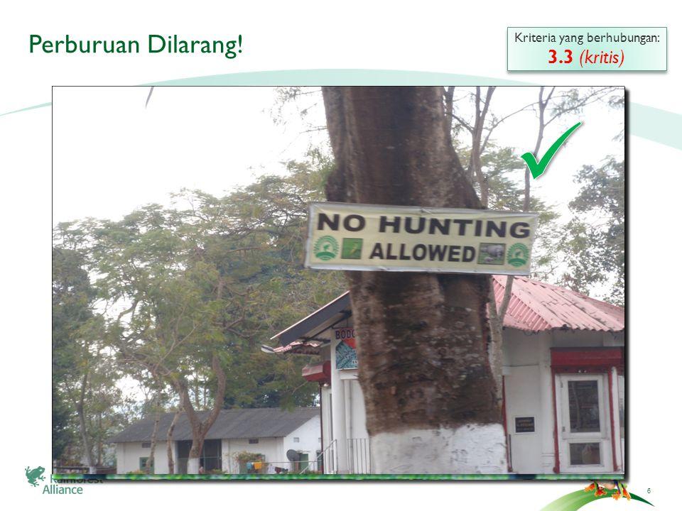 ©2009 RainHutan Alliance Perburuan dilarang.