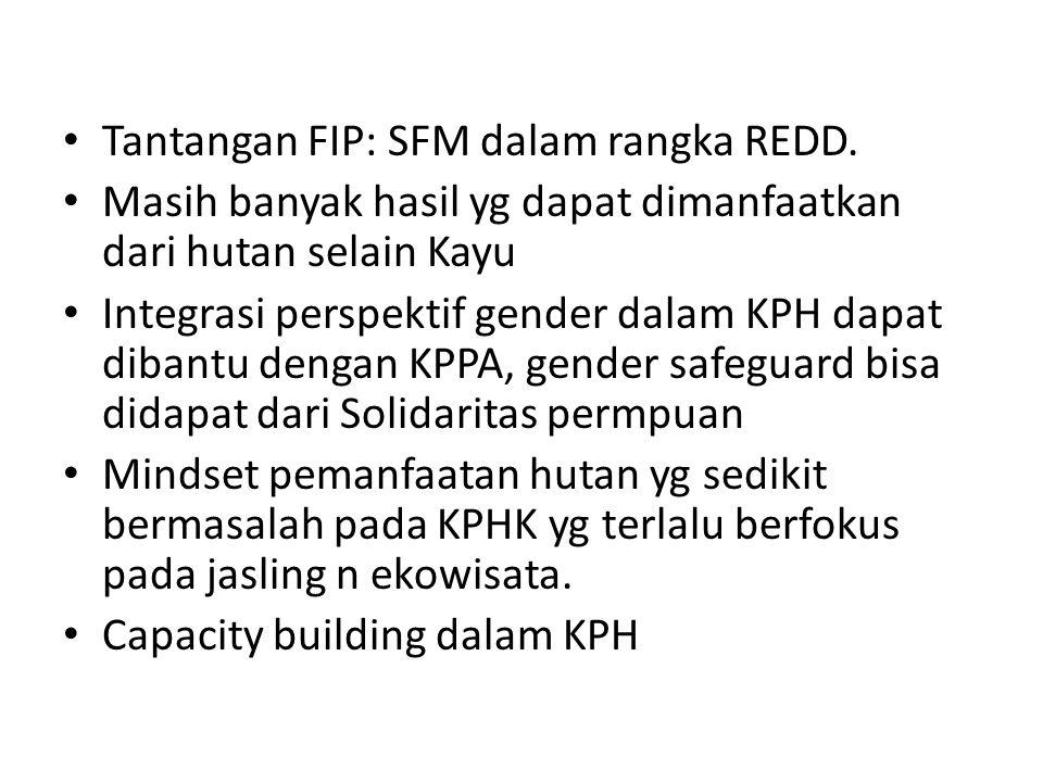 Tantangan FIP: SFM dalam rangka REDD. Masih banyak hasil yg dapat dimanfaatkan dari hutan selain Kayu Integrasi perspektif gender dalam KPH dapat diba