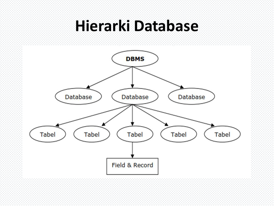 Melihat Data Pada Tabel