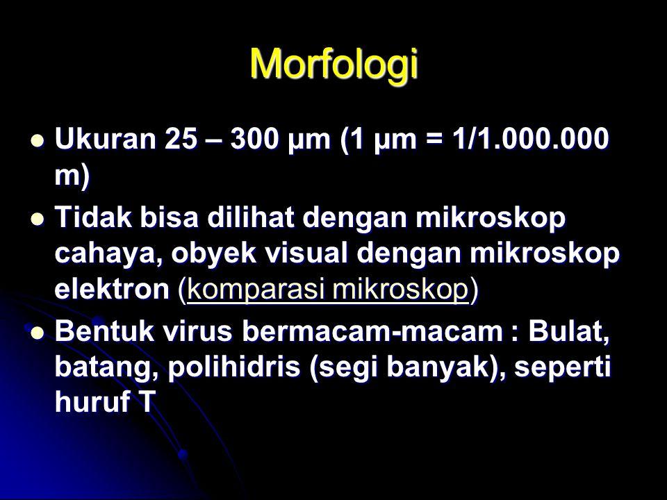 Morfologi Ukuran 25 – 300 µm (1 µm = 1/1.000.000 m) Ukuran 25 – 300 µm (1 µm = 1/1.000.000 m) Tidak bisa dilihat dengan mikroskop cahaya, obyek visual dengan mikroskop elektron (komparasi mikroskop) Tidak bisa dilihat dengan mikroskop cahaya, obyek visual dengan mikroskop elektron (komparasi mikroskop)komparasi mikroskopkomparasi mikroskop Bentuk virus bermacam-macam : Bulat, batang, polihidris (segi banyak), seperti huruf T Bentuk virus bermacam-macam : Bulat, batang, polihidris (segi banyak), seperti huruf T