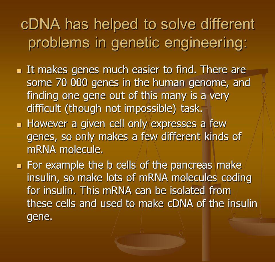 cDNA has helped to solve different problems in genetic engineering: It makes genes much easier to find. There are some 70 000 genes in the human genom