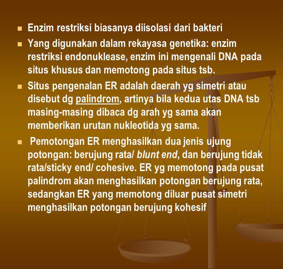 Enzim restriksi biasanya diisolasi dari bakteri Yang digunakan dalam rekayasa genetika: enzim restriksi endonuklease, enzim ini mengenali DNA pada sit