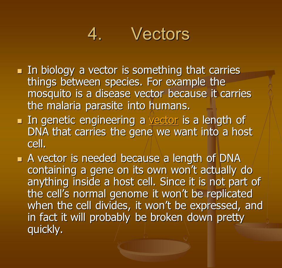 4. Vectors 4. Vectors In biology a vector is something that carries things between species. For example the mosquito is a disease vector because it ca