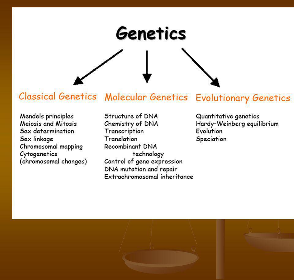 Tugas kelompok Kel 1: extra chromosomal inheritance Kel 1: extra chromosomal inheritance Kel 2: Replikasi Kel 2: Replikasi Kel 3: Transkripsi Kel 3: Transkripsi Kel 4: Translasi Kel 4: Translasi 1.