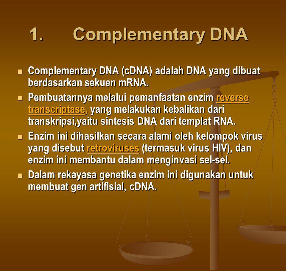 1. Complementary DNA 1. Complementary DNA Complementary DNA (cDNA) adalah DNA yang dibuat berdasarkan sekuen mRNA. Complementary DNA (cDNA) adalah DNA