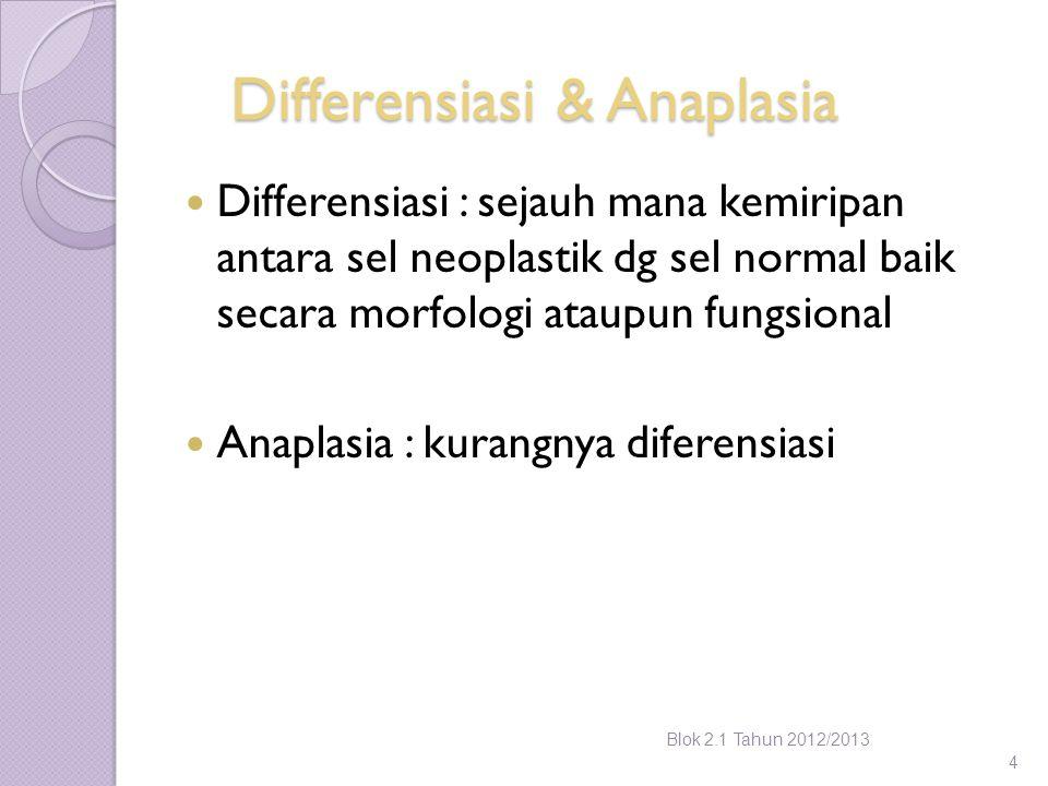 Differensiasi & Anaplasia Differensiasi : sejauh mana kemiripan antara sel neoplastik dg sel normal baik secara morfologi ataupun fungsional Anaplasia
