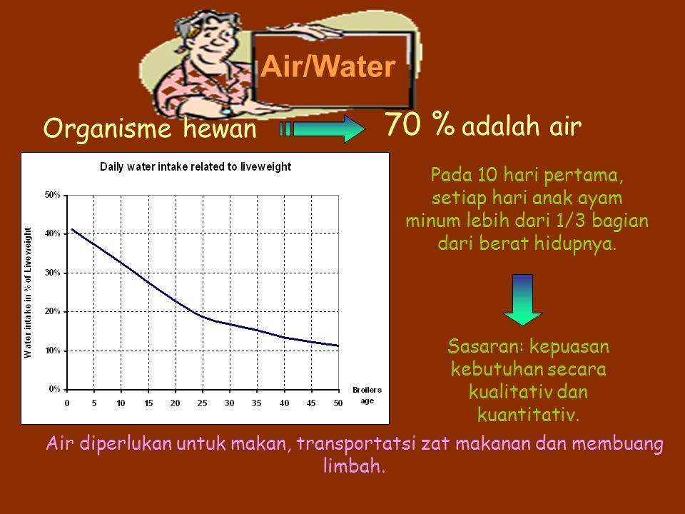 Air/Water Organisme hewan 70 % adalah air Pada 10 hari pertama, setiap hari anak ayam minum lebih dari 1/3 bagian dari berat hidupnya. Sasaran: kepuas