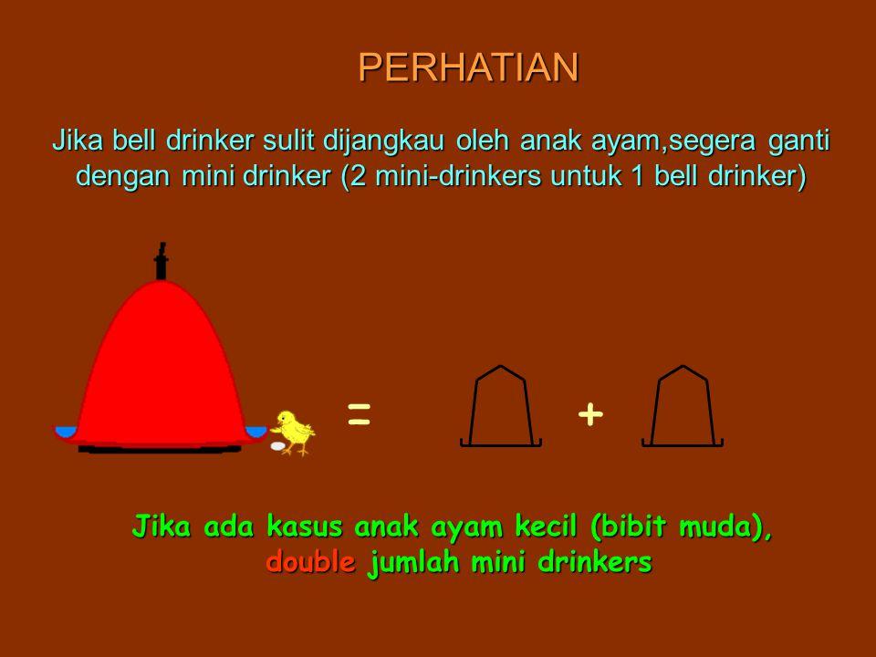 PERHATIAN Jika bell drinker sulit dijangkau oleh anak ayam,segera ganti dengan mini drinker (2 mini-drinkers untuk 1 bell drinker) Jika ada kasus anak