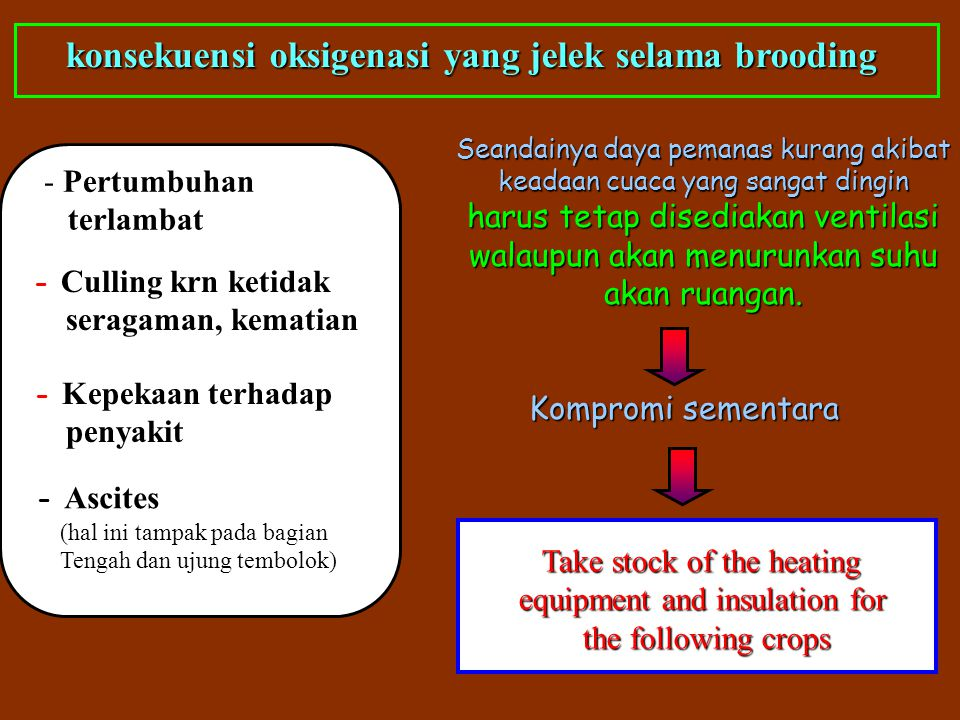 konsekuensi oksigenasi yang jelek selama brooding - Pertumbuhan terlambat - Culling krn ketidak seragaman, kematian - Kepekaan terhadap penyakit - Asc