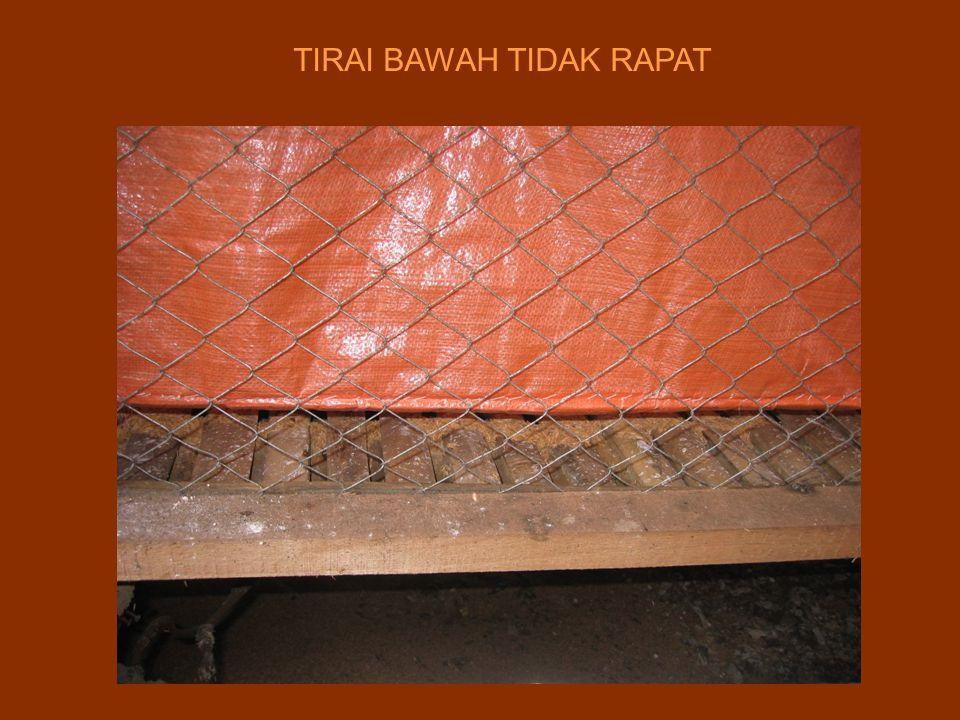 TIRAI BAWAH TIDAK RAPAT