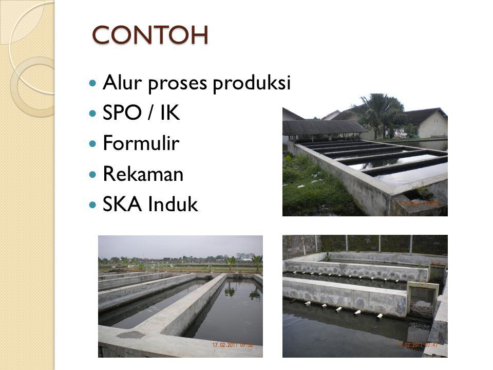 CONTOH Alur proses produksi SPO / IK Formulir Rekaman SKA Induk