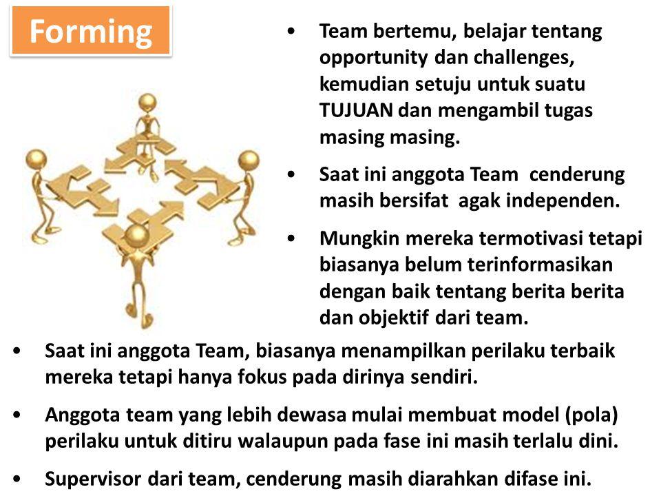 Team bertemu, belajar tentang opportunity dan challenges, kemudian setuju untuk suatu TUJUAN dan mengambil tugas masing masing. Saat ini anggota Team
