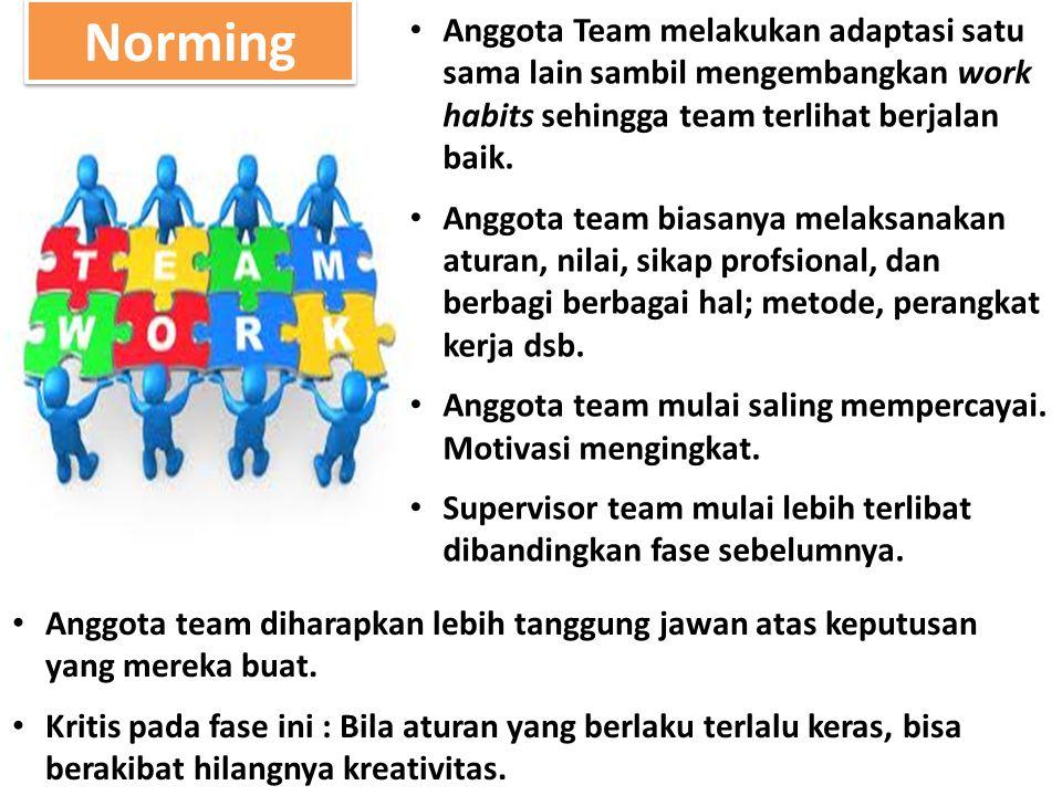 Norming Anggota Team melakukan adaptasi satu sama lain sambil mengembangkan work habits sehingga team terlihat berjalan baik. Anggota team biasanya me