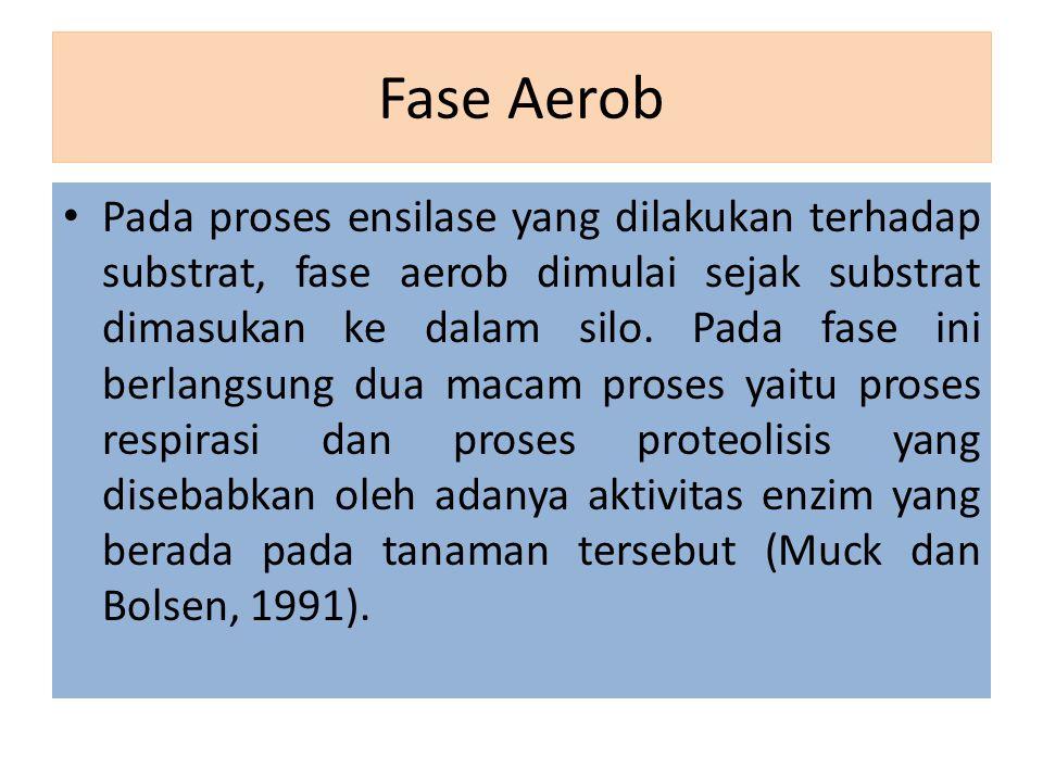 Fase Aerob Pada proses ensilase yang dilakukan terhadap substrat, fase aerob dimulai sejak substrat dimasukan ke dalam silo. Pada fase ini berlangsung