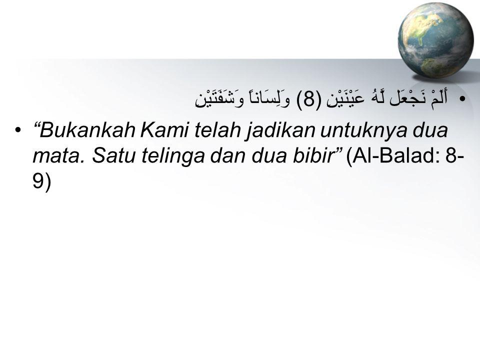"""أَلَمْ نَجْعَل لَّهُ عَيْنَيْنِ (8) وَلِسَاناً وَشَفَتَيْنِ """"Bukankah Kami telah jadikan untuknya dua mata. Satu telinga dan dua bibir"""" (Al-Balad: 8-"""