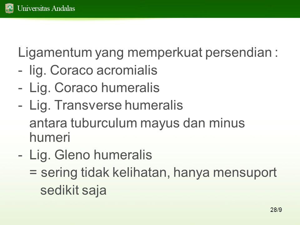 28/9 Ligamentum yang memperkuat persendian : -lig. Coraco acromialis -Lig. Coraco humeralis -Lig. Transverse humeralis antara tuburculum mayus dan min