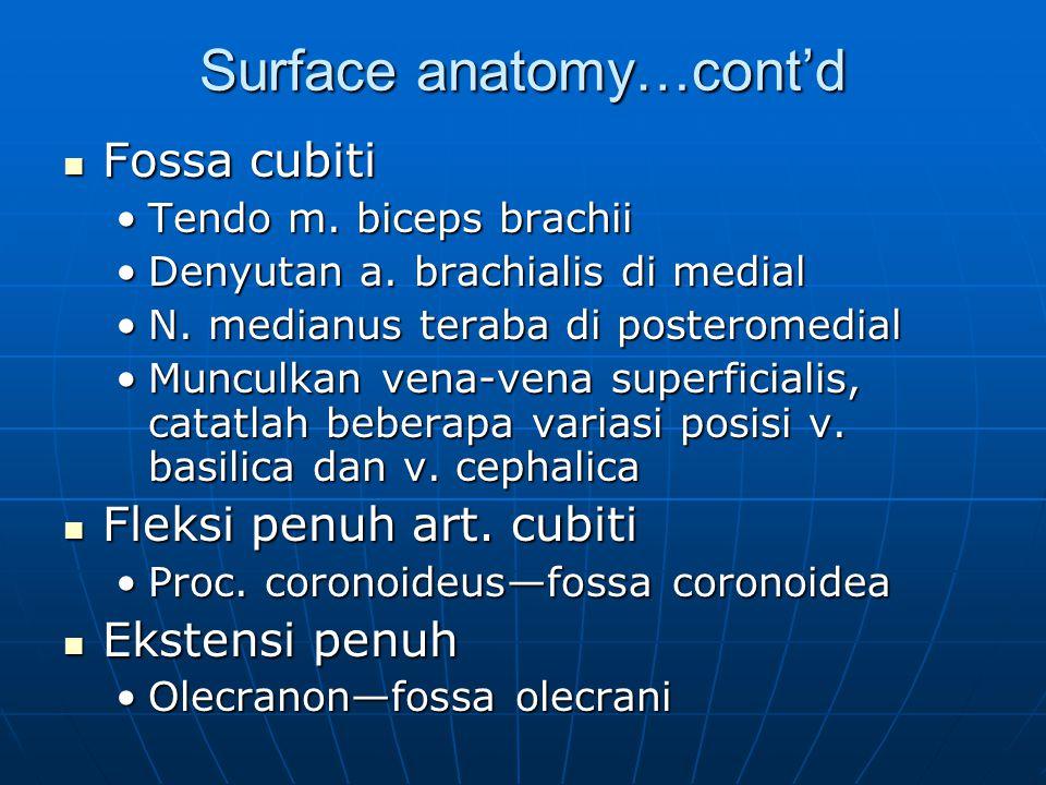 Surface anatomy…cont'd Fossa cubiti Fossa cubiti Tendo m. biceps brachiiTendo m. biceps brachii Denyutan a. brachialis di medialDenyutan a. brachialis
