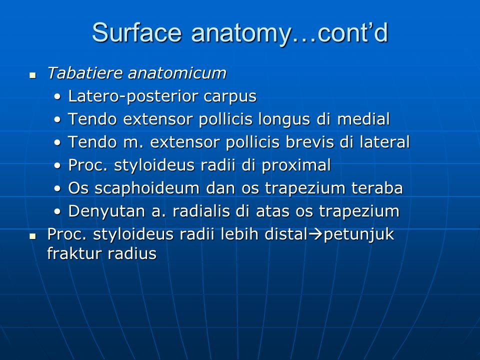 Surface anatomy…cont'd Tabatiere anatomicum Tabatiere anatomicum Latero-posterior carpusLatero-posterior carpus Tendo extensor pollicis longus di medi