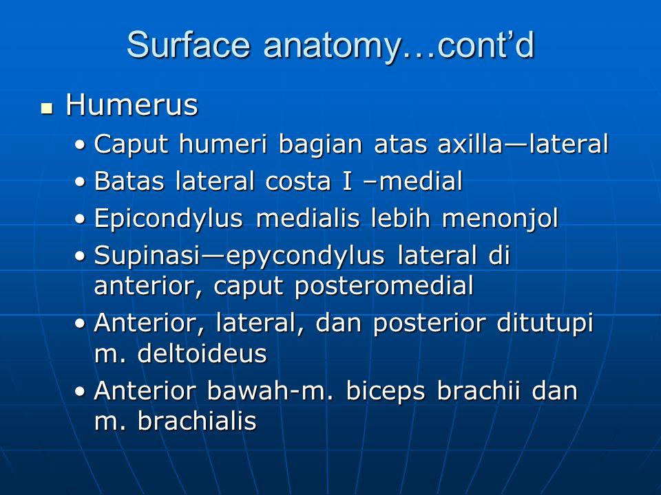 Surface anatomy…cont'd Humerus Humerus Caput humeri bagian atas axilla—lateralCaput humeri bagian atas axilla—lateral Batas lateral costa I –medialBat