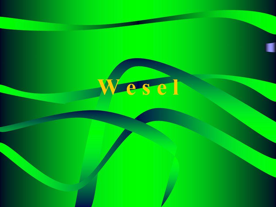 Bentuk Khusus Surat Wesel Wesel Atas Pengganti Penerbit Wesel Atas Pengganti Penerbit (Penerbit = Pemegang I) Wesel Atas penerbit SendiriWesel Atas penerbit Sendiri (Penerbit = Tersangkut) Wesel Perhitungan Orang KetigaWesel Perhitungan Orang Ketiga Wesel IncassoWesel Incasso