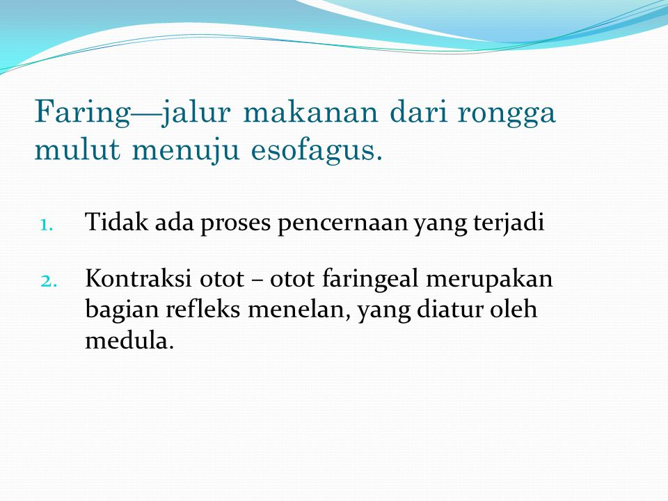 Faring—jalur makanan dari rongga mulut menuju esofagus. 1. Tidak ada proses pencernaan yang terjadi 2. Kontraksi otot – otot faringeal merupakan bagia
